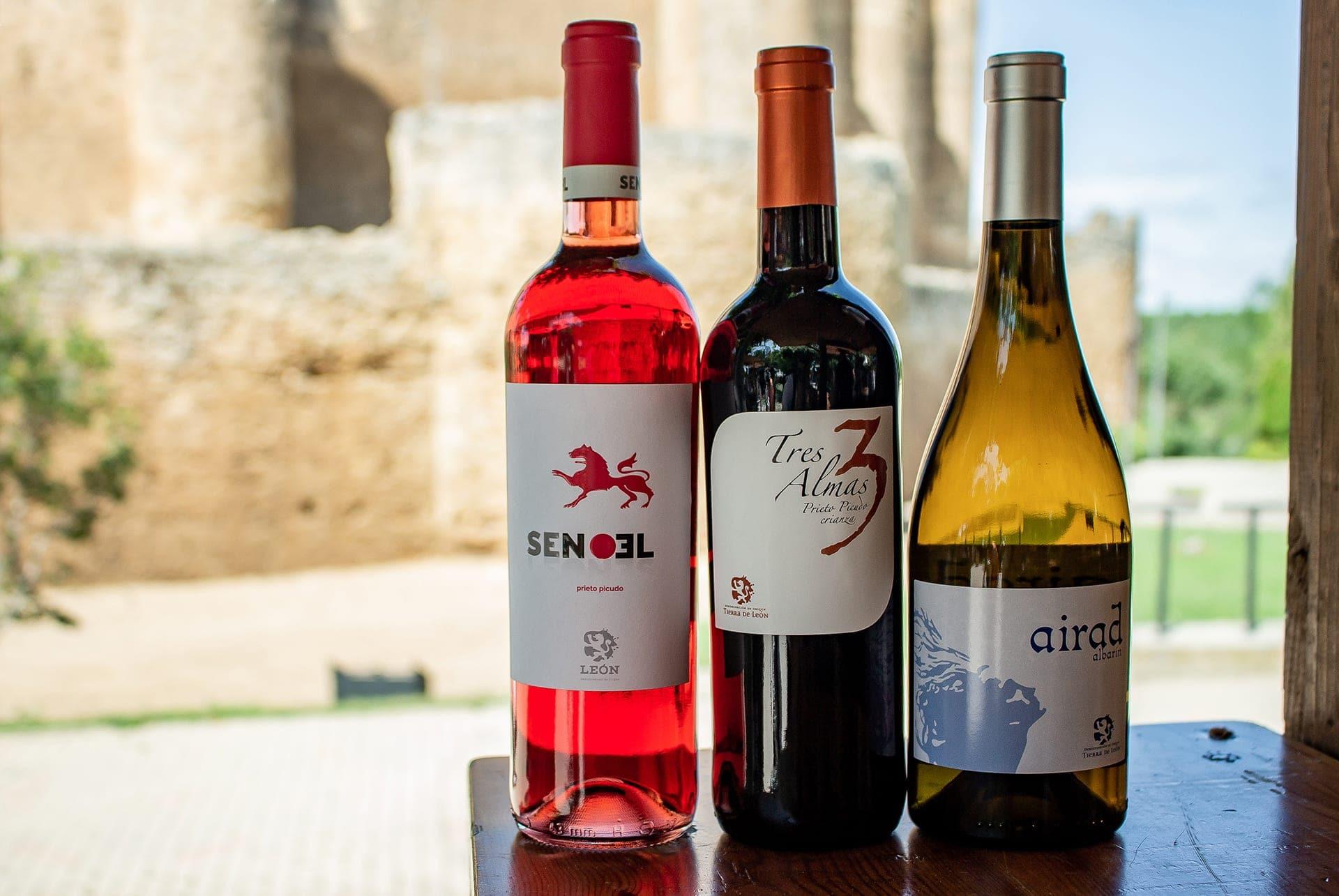 Senoel (leonés al revés), Tres Almas y Airad de Bodegas Peláez