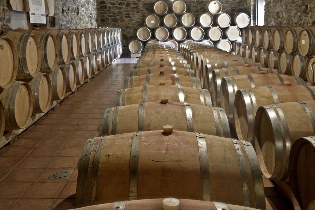 Bodega vinos en El Bierzo